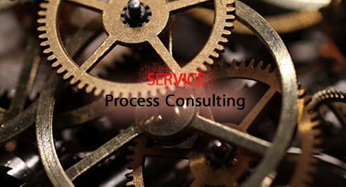 process-consulting